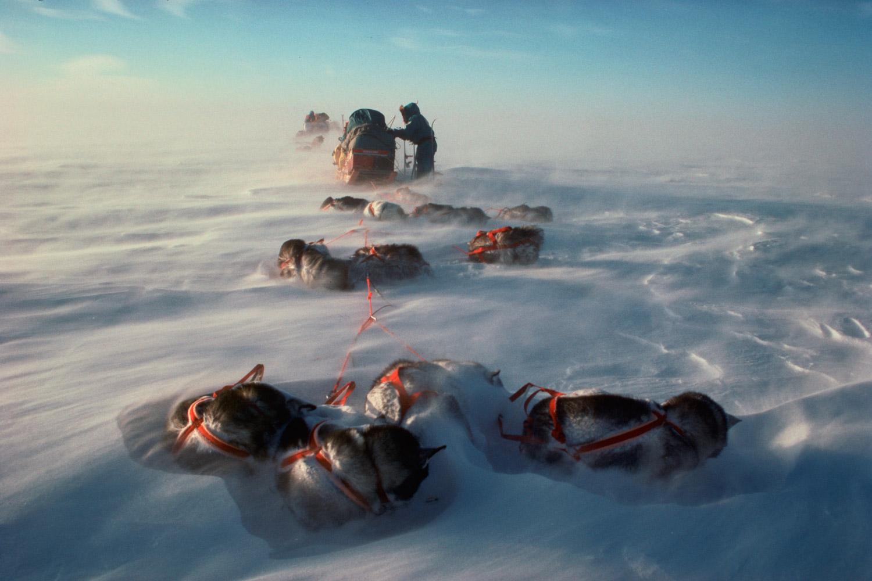 transantarctic_expedition