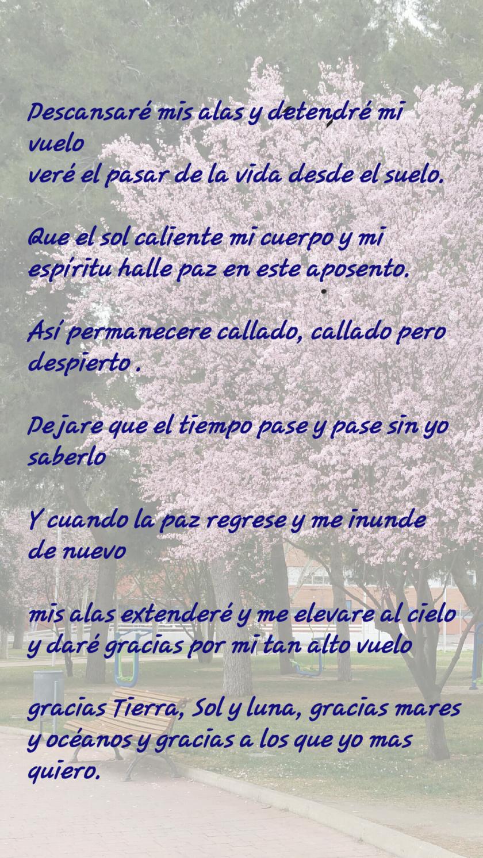 nuevonota21_01